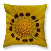 Australia - Yellow Daisy Flower Throw Pillow