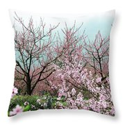 Blossoming Peach Flowers In Spring Throw Pillow