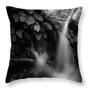 Broad River Flowing Through Wooded Forest Throw Pillow