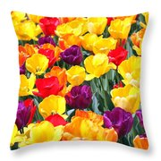 Amsterdam Tulips. Throw Pillow