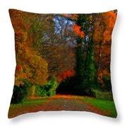Landscape Hd Throw Pillow