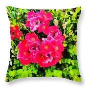 Velvet Nights  Throw Pillow