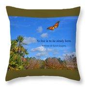 240- Antoine De Saint Exupery Throw Pillow