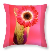 2401c-001 Throw Pillow