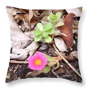 Australia - Pink Flowers Throw Pillow