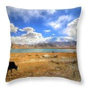 Xinjiang Province China Throw Pillow