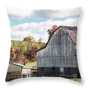 252 New Bedford Throw Pillow