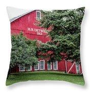 254 Salem Ohio_fa Throw Pillow