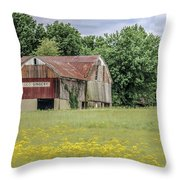 257 Wooster_fa Throw Pillow