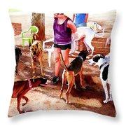 #258 Rruff Dog Park Throw Pillow