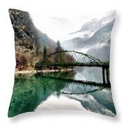 Art Nature Throw Pillow