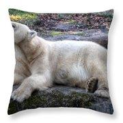 Hellabrunn Zoo - Munich, Germany Throw Pillow