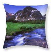 R F Landscape Throw Pillow