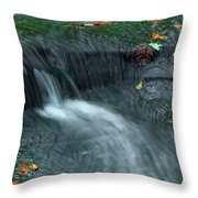 260 Olmsted Falls Throw Pillow
