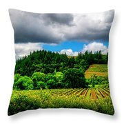 2623- Comsrock Winery Throw Pillow