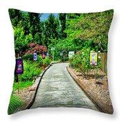 2632- Coffaro Vineyard Throw Pillow