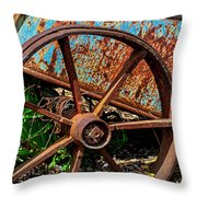 2635- Coffaro Vineyard Throw Pillow