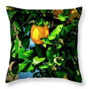 2644- Lemon Tree Throw Pillow