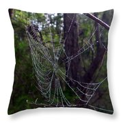 Australia - Uniquely Yours Spider Web Throw Pillow