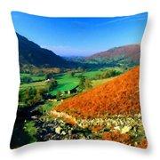 Path Landscape Light Throw Pillow