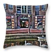 270 Amsterdam Throw Pillow