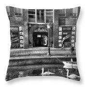 271 Amsterdam Throw Pillow