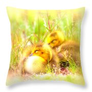 2736 - Canada Goose Throw Pillow