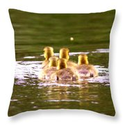 2767 - Canada Goose Throw Pillow