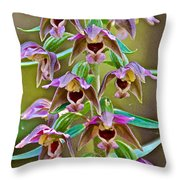 Helleborine On North Country Trail In Pictured Rocks National Lakeshore-michigan  Throw Pillow