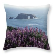 2a6101 Arched Rock And Blue Pod Lupine Ca Throw Pillow