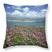 2a6106 Ice Plant Doran Beach Ca Throw Pillow
