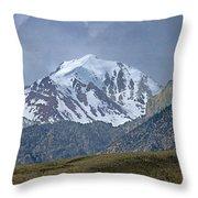 2d07508 High Peak In Lost River Range Throw Pillow