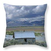 2d07515 Abandoned Cabin Throw Pillow