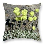 2da5927-dc Sulpher Flower Throw Pillow