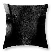 2nd Skin Throw Pillow