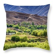 aerial view of Leh ladakh landscape Jammu and Kashmir India Throw Pillow