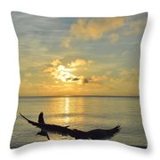 Alas De Amanecer Throw Pillow
