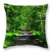 Appalachian Trail In Maryland Throw Pillow