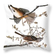 Audubon: Sparrow, (1827-38) Throw Pillow