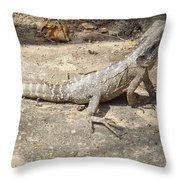Australian Native Animals Throw Pillow