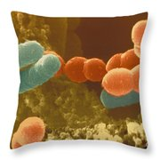Bacteria In Yogurt Throw Pillow