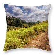 Bali Landscape Throw Pillow