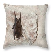 Bats Inside The Pyramid At Grupo Nohoch Mul At The Coba Ruins  Throw Pillow