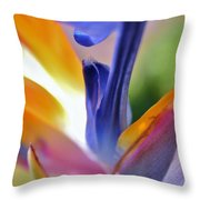 3 Bird Of Paradise Macro Throw Pillow