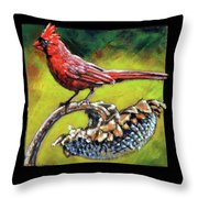 Birdman Of Alcatraz Detail Throw Pillow
