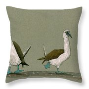 Blue Footed Boobies Throw Pillow