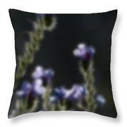 Blurred Seasonal Flower With Dark Background Throw Pillow