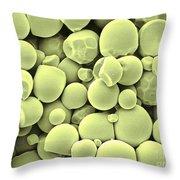 Cassava Starch Granules Sem Throw Pillow