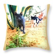 3 Cat Attack Throw Pillow