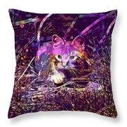 Cat Kitten Mieze Red Mackerel Tabby  Throw Pillow